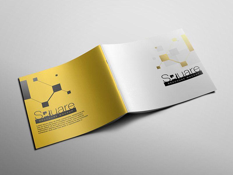 kaspplus-broshure7